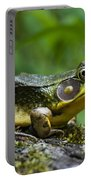 A Frog Is Forever Portable Battery Charger