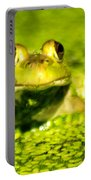 A Frogs Day Portable Battery Charger