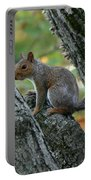 A Gray Squirrel Pose  Portable Battery Charger