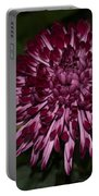 A Happy Birthday Wish With An Elegant Maroon And Pink Mum Portable Battery Charger