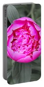 A Hint Of Pink In The Garden Portable Battery Charger