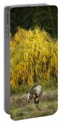 A Horse And A Willow Tree Portable Battery Charger