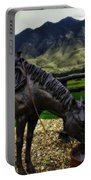 A Horse With No Name Portable Battery Charger