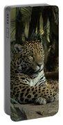 A Jaguar's Gaze Portable Battery Charger