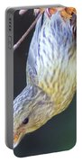 A Little Bird Eating Pine Cone Seeds  Portable Battery Charger by Jeff Swan