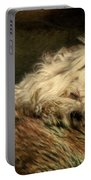A Long Winter's Nap Portable Battery Charger by Lois Bryan