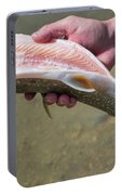 A Man Cleans A Lake Trout Fish Portable Battery Charger
