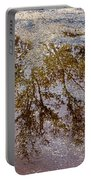 A Monet Moment IIi Portable Battery Charger