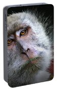 A Monkey's Look Portable Battery Charger