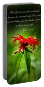 A Mountain Flower  John 3 16 Portable Battery Charger