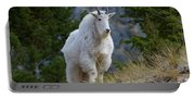 A Mountain Goat Stands On A Grassy Portable Battery Charger