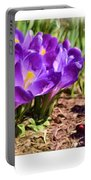 A Painting Crocus Panoramic Portable Battery Charger