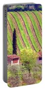 A Painting Tuscan Vineyard Portable Battery Charger