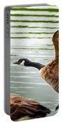 A Pair Of Canada Geese Landing On Rockland Lake Portable Battery Charger