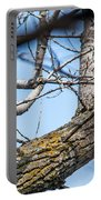 A Pair Of Red-bellied Woodpeckers Portable Battery Charger