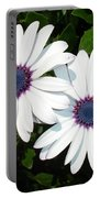 A Pair Of White African Daisies Portable Battery Charger