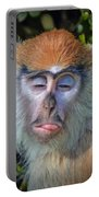 A Patas Baby Monkey Behaving Badly Portable Battery Charger