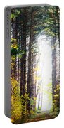 A Path In The Pines Portable Battery Charger