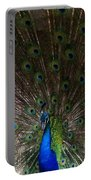 A Peacock's Feathers Portable Battery Charger