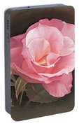 A Rose By Any Other Name.... Portable Battery Charger