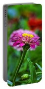 A Sea Of Zinnias 13 Portable Battery Charger
