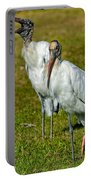 A Serious Woodstork Portable Battery Charger