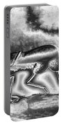 A Silvery Horny Day Portable Battery Charger