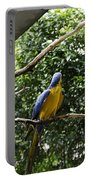 A Single Macaw Bird On A Branch Inside The Jurong Bird Park Portable Battery Charger