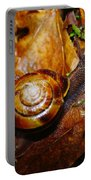 A Slow Snail Portable Battery Charger by Jeff Swan