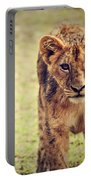 A Small Lion Cub Portrait. Tanzania Portable Battery Charger