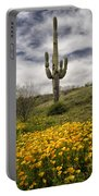 A Southwestern Style Spring Portable Battery Charger