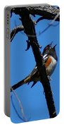 A Spotted Towhee Mid-song Portable Battery Charger