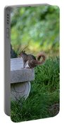 A Squirrel's Day Out Portable Battery Charger