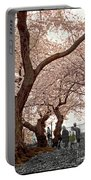 A Stroll In Central Park Portable Battery Charger