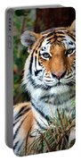 A Tigers Glance Portable Battery Charger