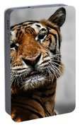 A Tiger's Look Portable Battery Charger