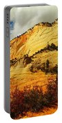 A Tree And Orange Hill Portable Battery Charger