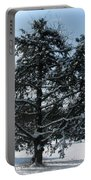 A Tree In Winter Portable Battery Charger