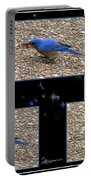 A Typical Eastern Bluebird's Lunch - Featured In Comfortable Art Group Portable Battery Charger