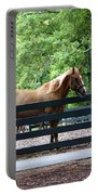 A Very Beautiful Hilton Head Island Horse Portable Battery Charger