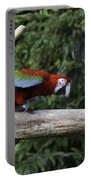 A Very Colorful And Bright Macaw Bird Perched On A Branch Portable Battery Charger