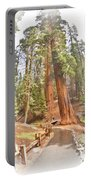 A Walk Among The Giant Sequoias Portable Battery Charger