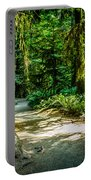 Pathway Cathedral Grove Portable Battery Charger