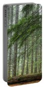 A Walk Through The Forest Portable Battery Charger