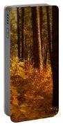 A Walk Through The Woods  Portable Battery Charger by Saija  Lehtonen