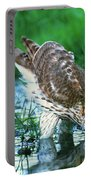 A Wild Juvenile Cooper's Hawk Drinks From A Pond Portable Battery Charger