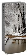 A Winter Walk  Portable Battery Charger