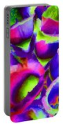 Abstract 102 Portable Battery Charger