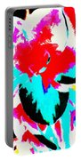Abstract 107 Portable Battery Charger