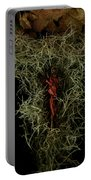 Abstract Christmas Manger Portable Battery Charger